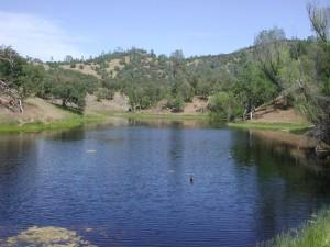 Mustang Pond